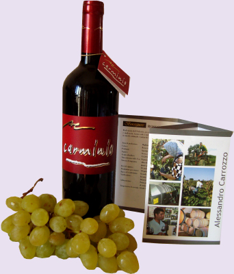 Made in Italy niche red wines for a vip market, wines from primitivo and negroamaro grapes to produce the most exclusive wine of the Italian producers to high class restaurants and vip distributors in United States, retail wineries in California, Middle East, Germany wineries, China distribution market. Primitivo red wine for lovers for a vip tables and niche Negroamaro wines for vip world market